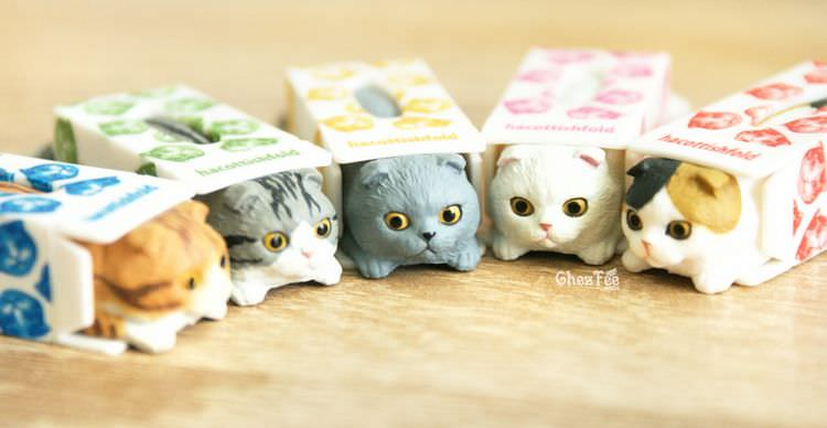 boutique kawaii shop chezfee gashapon blindbox neko scottish fold chat boite 13