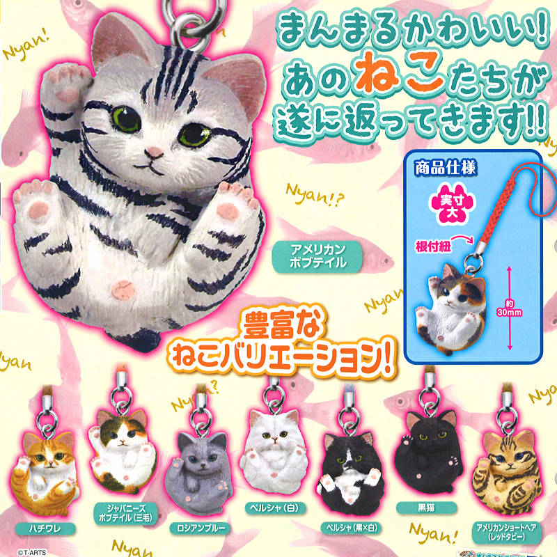 boutique kawaii shop chezfee object gashapon blindbox chat roule rond 1