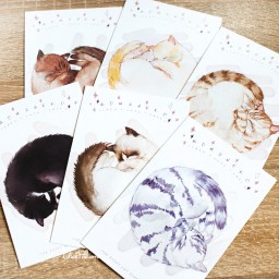 boutique-kawaii-shop-chezfee-carte-postale-postcard-chat-endormi-3