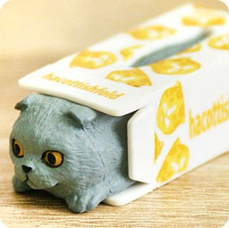 boutique-kawaii-shop-chezfee-gashapon-blindbox-neko-scottish-fold-chat-boite-gris