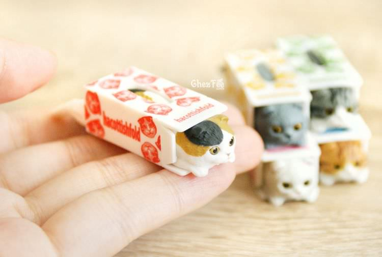 boutique kawaii shop chezfee gashapon blindbox neko scottish fold chat boite 12