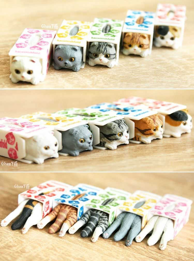 boutique kawaii shop chezfee gashapon blindbox neko scottish fold chat boite 3
