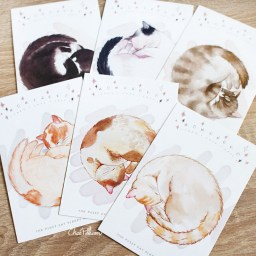 boutique-kawaii-shop-chezfee-carte-postale-postcard-chat-endormi-4
