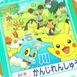 boutique-kawaii-shop-cute-chezfee-com-cahier-carnet-apprendre-japonais-kanji-authentique-pokemon