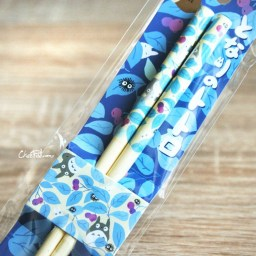 boutique-kawaii-shop-france-lille-chezfee-cuisine-japaonaise-baguette-chopsticks-japanese-studio-ghibli-totoro-myrtille-1
